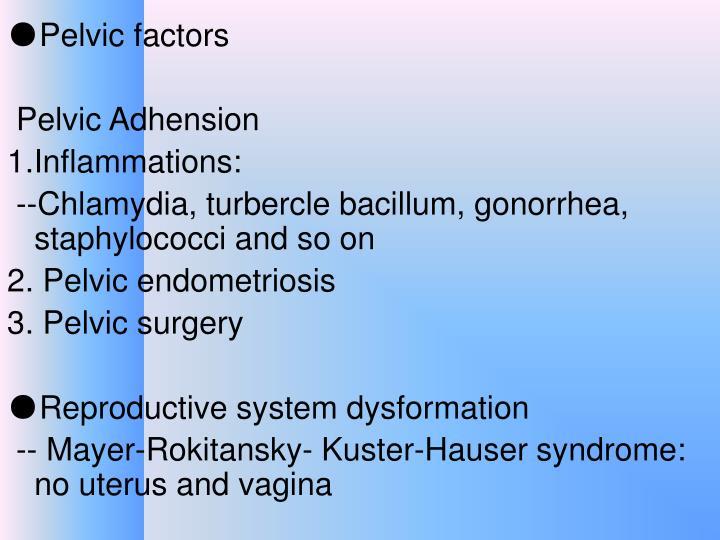 ●Pelvic factors