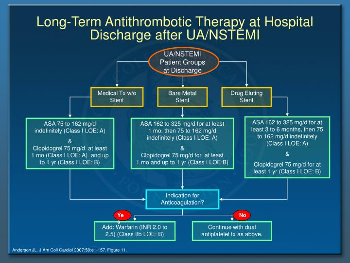 Long-Term Antithrombotic Therapy at Hospital Discharge after UA/NSTEMI