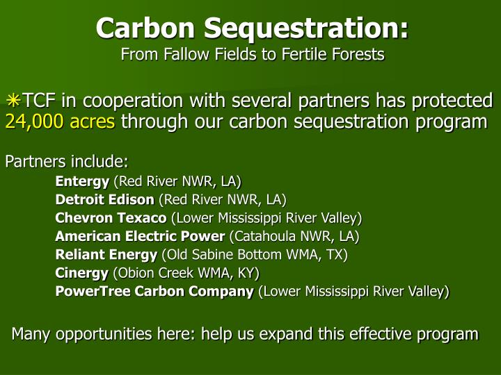 Carbon Sequestration:
