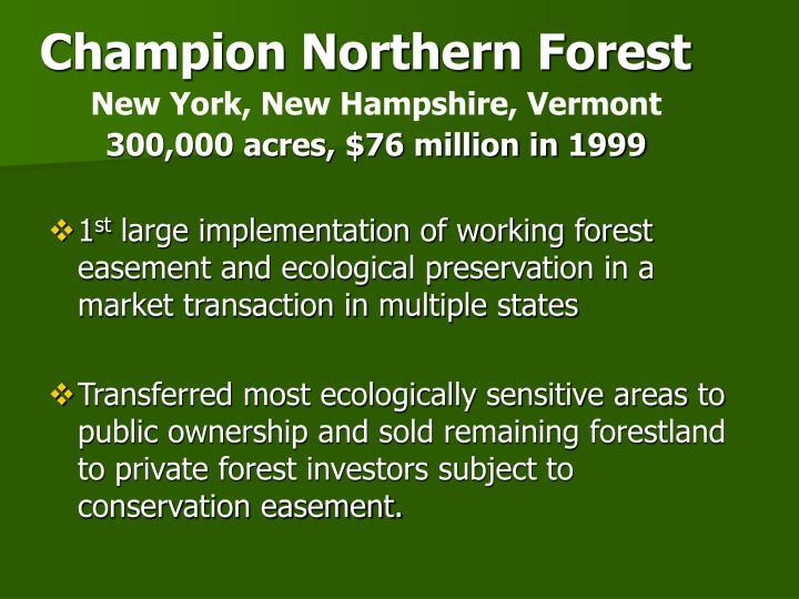 Champion Northern Forest