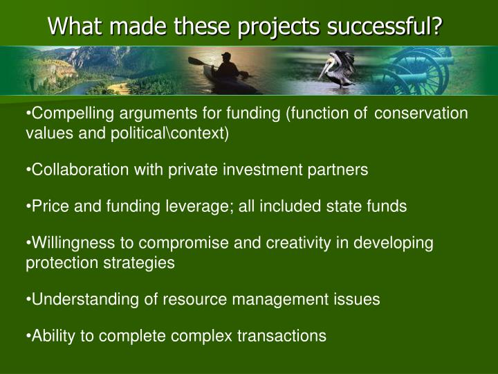 What made these projects successful?
