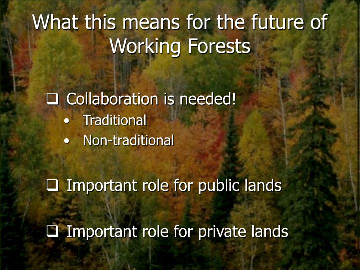 What this means for the future of Working Forests