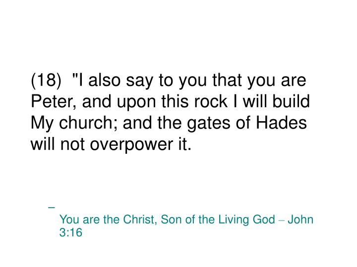 """(18)  """"I also say to you that you are Peter, and upon this rock I will build My church; and the gates of Hades will not overpower it."""
