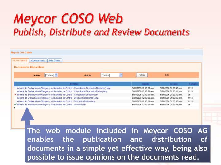 Meycor COSO Web