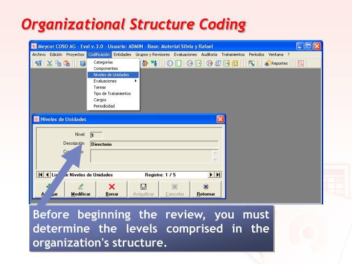 Organizational Structure Coding