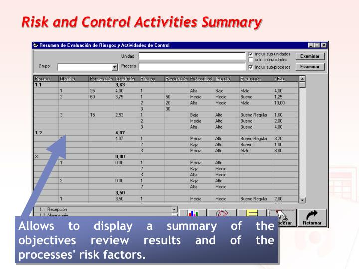 Risk and Control Activities Summary