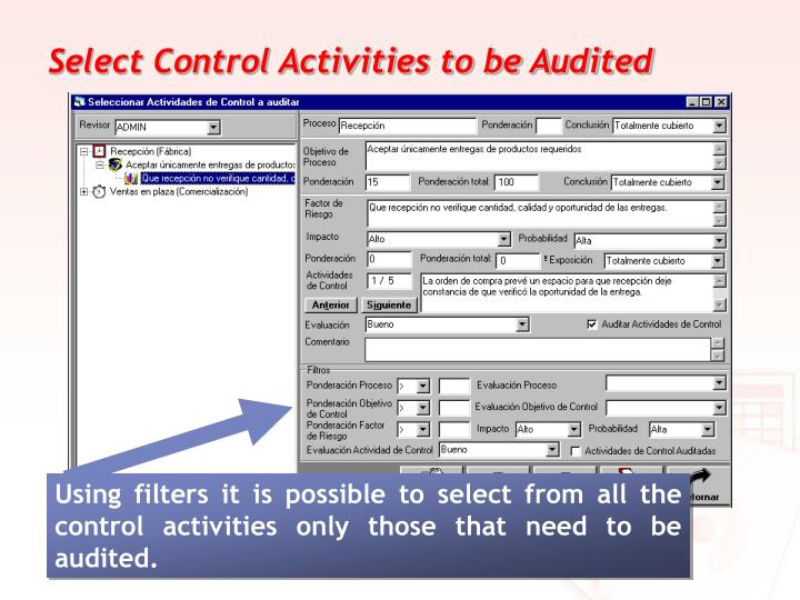 Select Control Activities to be Audited