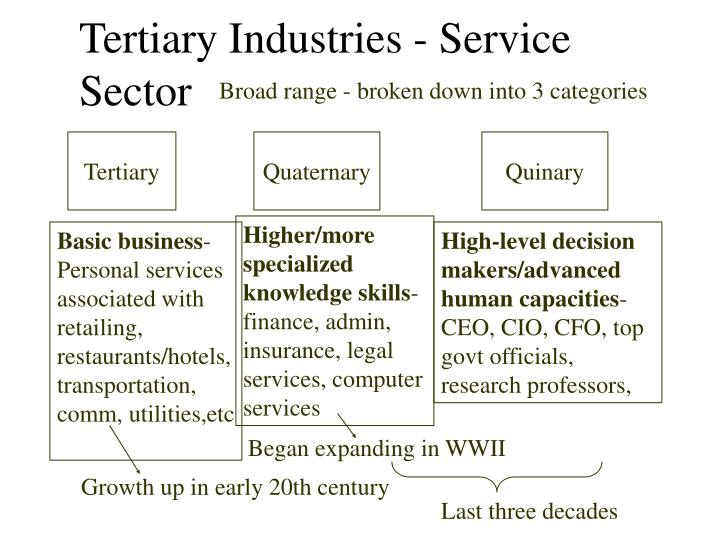 Tertiary Industries - Service Sector