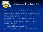 geospatial interface gi1