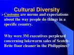 cultural diversity1