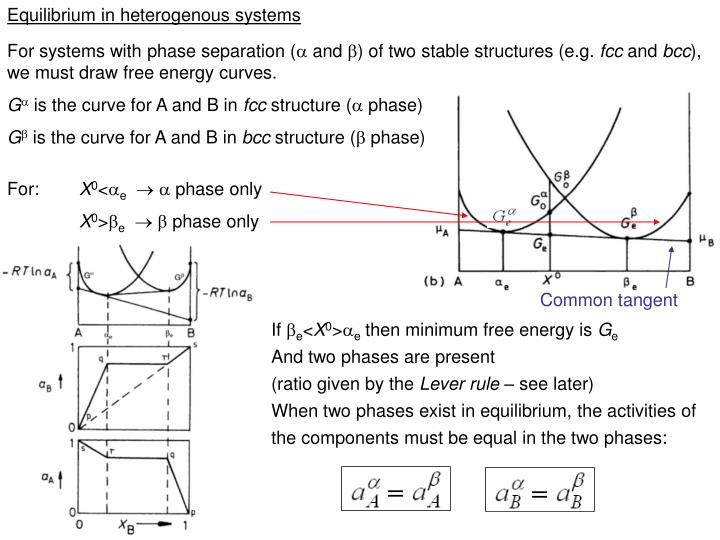 Equilibrium in heterogenous systems