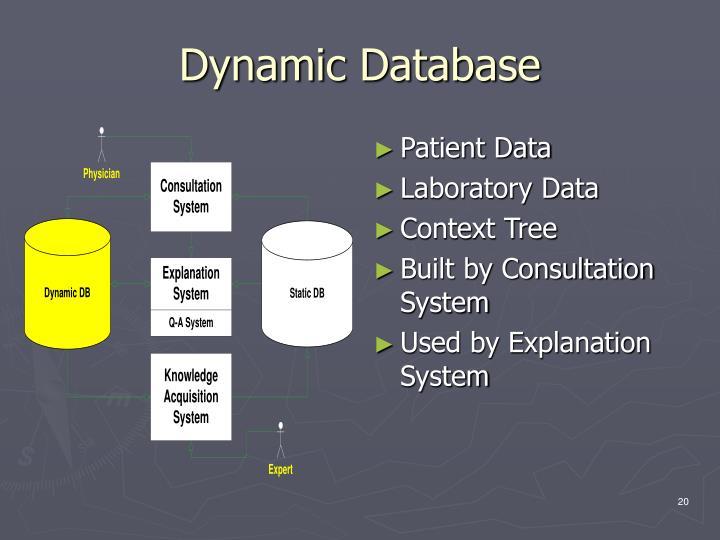 Dynamic Database