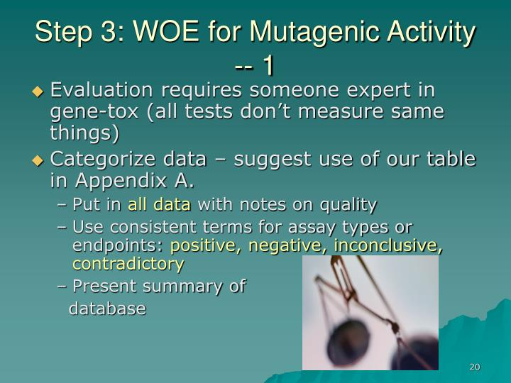 Step 3: WOE for Mutagenic Activity -- 1