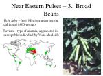 near eastern pulses 3 broad beans