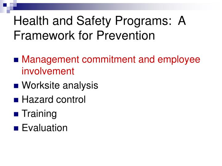 Health and Safety Programs:  A Framework for Prevention