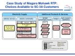 case study of niagara mohawk rtp choices available to sc 3a customers