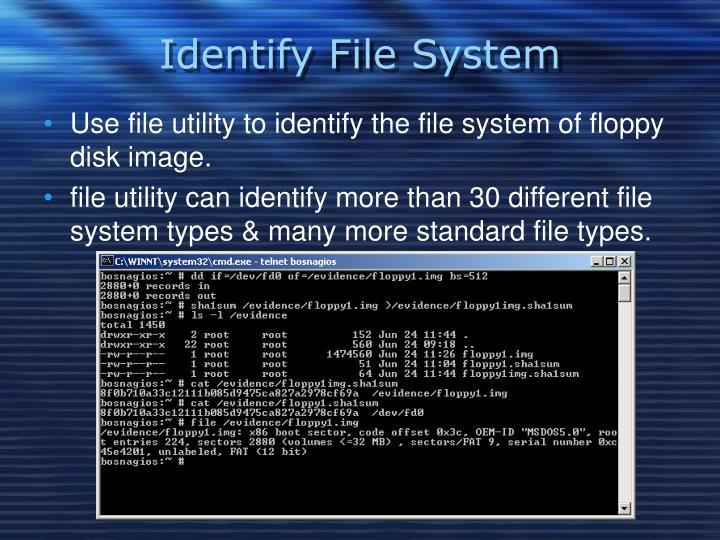 Identify File System