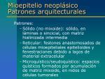 mioepitelio neopl sico patrones arquitecturales2