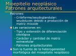 mioepitelio neopl sico patrones arquitecturales3