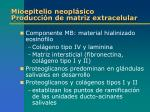 mioepitelio neopl sico producci n de matriz extracelular1
