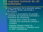 rol supresor tumoral de c l mioepiteliales1