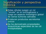 significaci n y perspectiva hist rica4