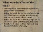 what were the effects of the canal