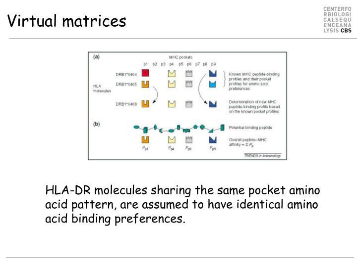 Virtual matrices