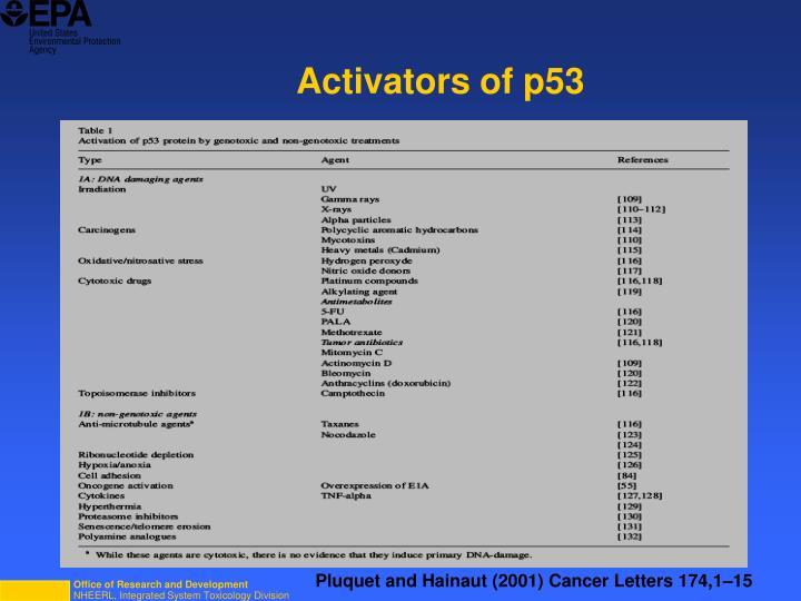 Activators of p53