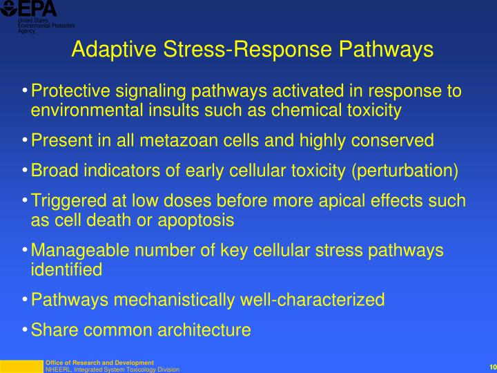 Adaptive Stress-Response Pathways