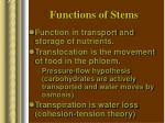 functions of stems
