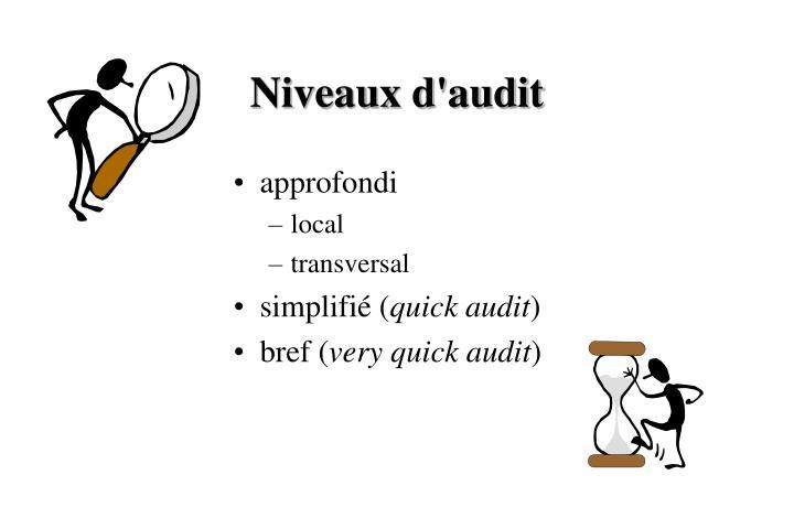 Niveaux d'audit