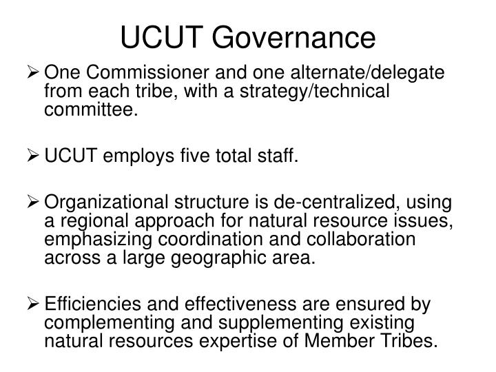 UCUT Governance