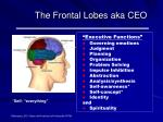 the frontal lobes aka ceo