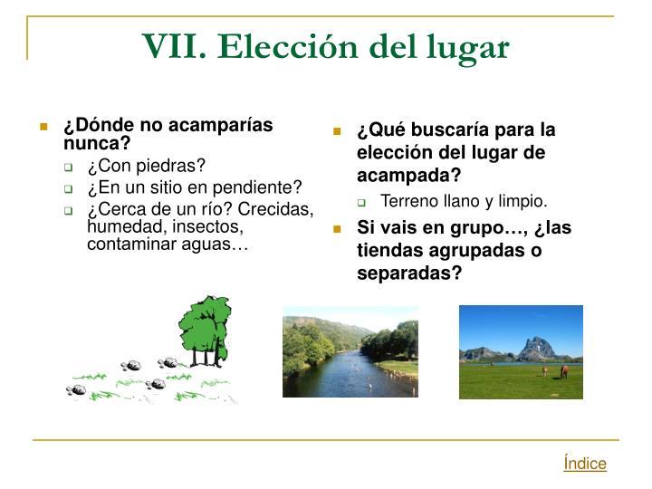 VII. Elección del lugar