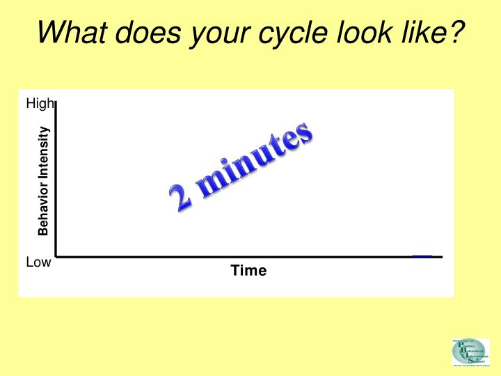 What does your cycle look like?