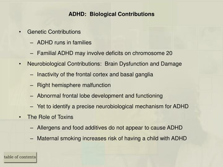 ADHD:  Biological Contributions