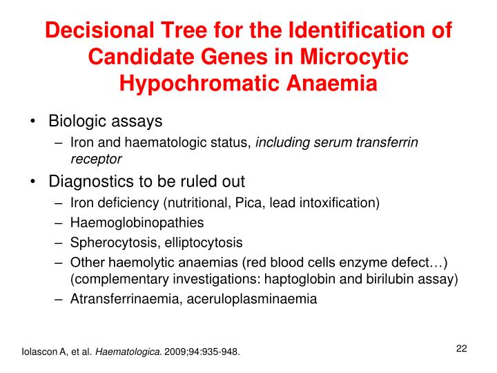 Decisional Tree for the Identification of Candidate Genes in Microcytic Hypochromatic Anaemia
