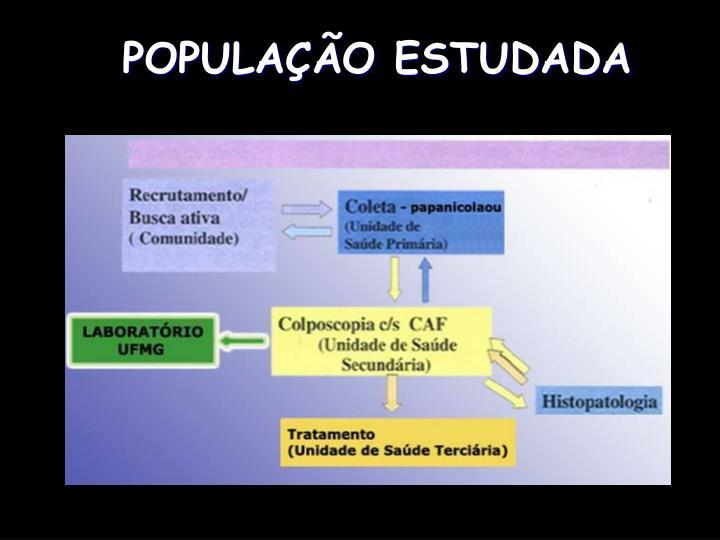 POPULAÇÃO ESTUDADA