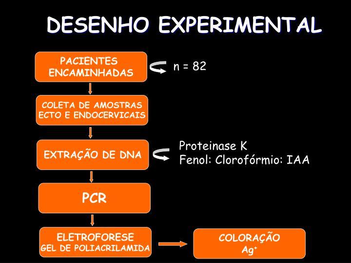 DESENHO EXPERIMENTAL