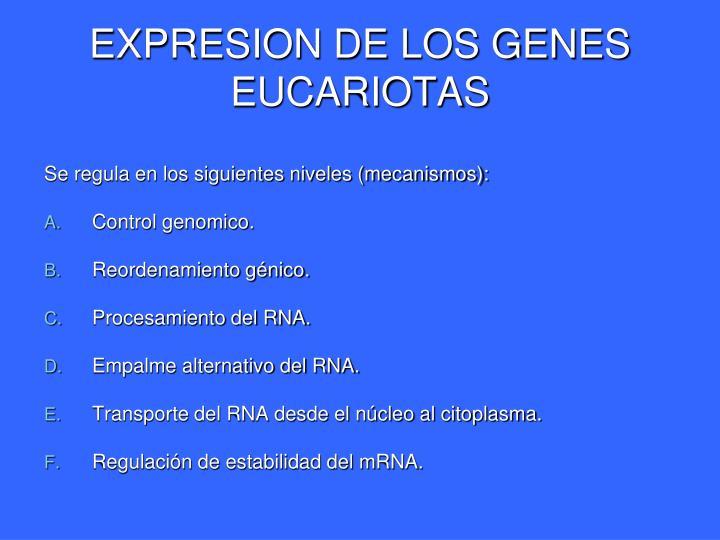 EXPRESION DE LOS GENES EUCARIOTAS