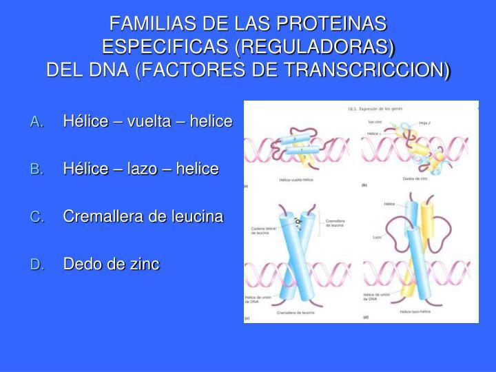 FAMILIAS DE LAS PROTEINAS