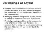 developing a gt layout