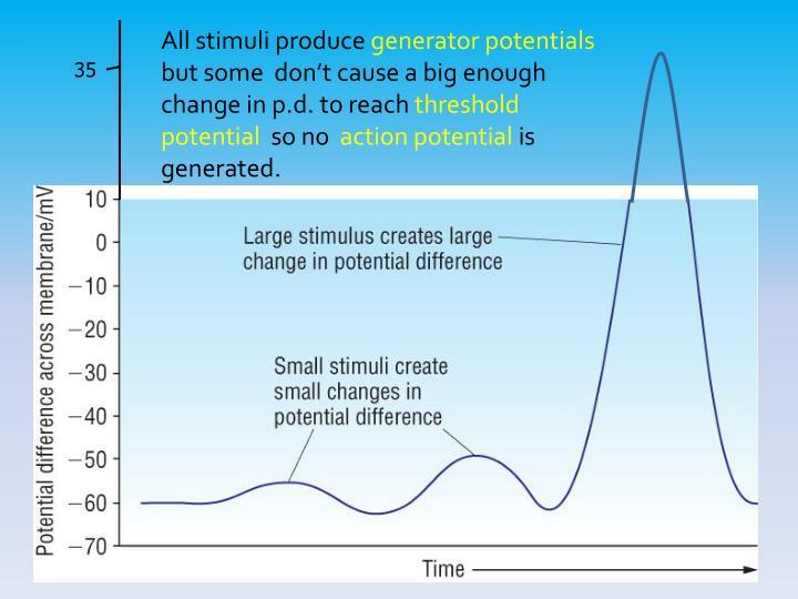All stimuli produce