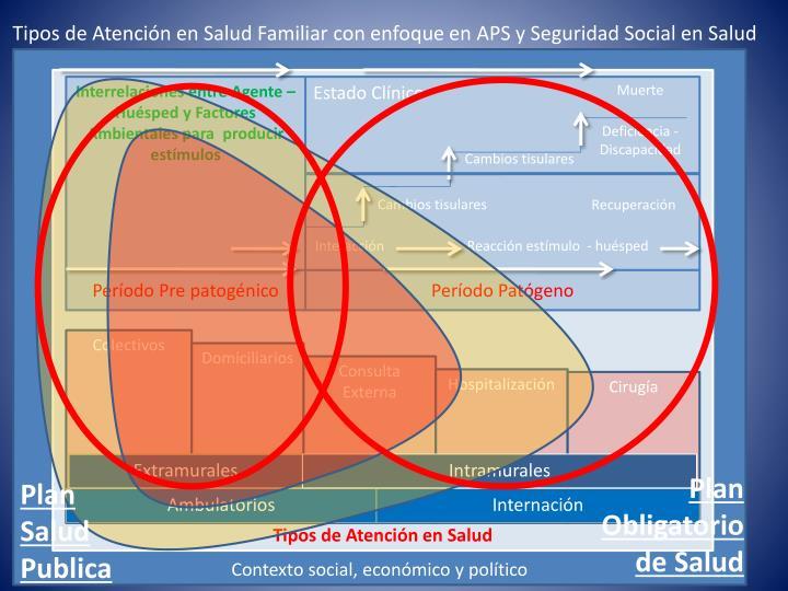 Tipos de Atención en Salud Familiar con enfoque en APS y Seguridad Social en Salud