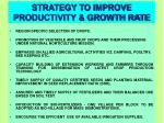 strategy to improve productivity growth rate