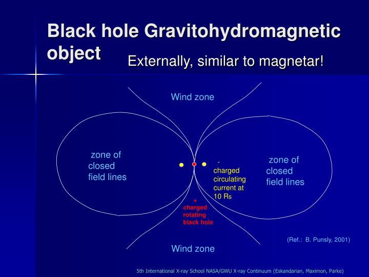 Black hole Gravitohydromagnetic object