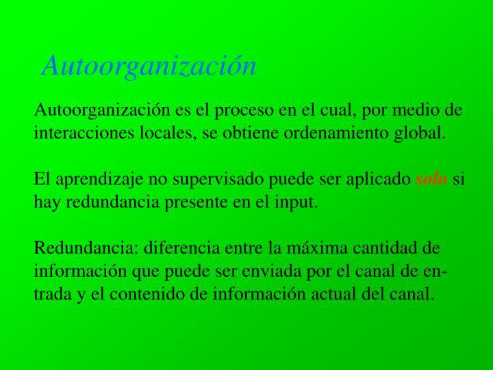 Autoorganizaci n
