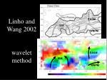 linho and wang 2002 wavelet method