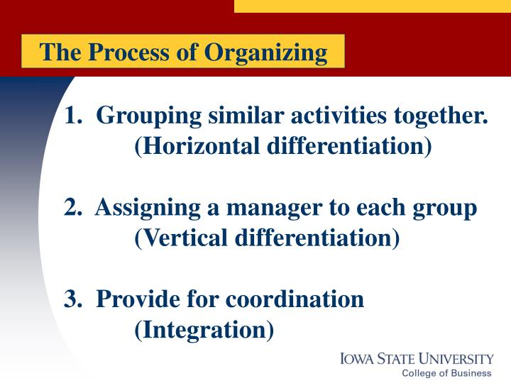 The Process of Organizing